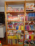BookCase_ChildrensYA1.jpg