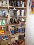 BookCase_LitParanormal.jpg