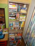 BookCase_InformationBiographies.jpg