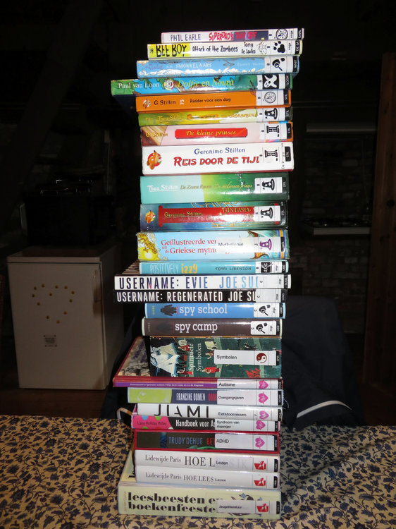 NewBooks_LibraryLoans_2019-05-04_Spines_05.jpg