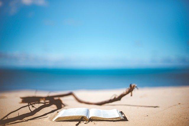 Summer Book.jpg